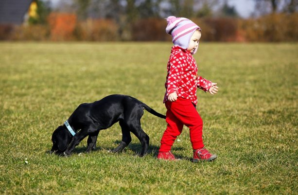 child-dog-outdoors